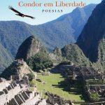Condor em Liberdade