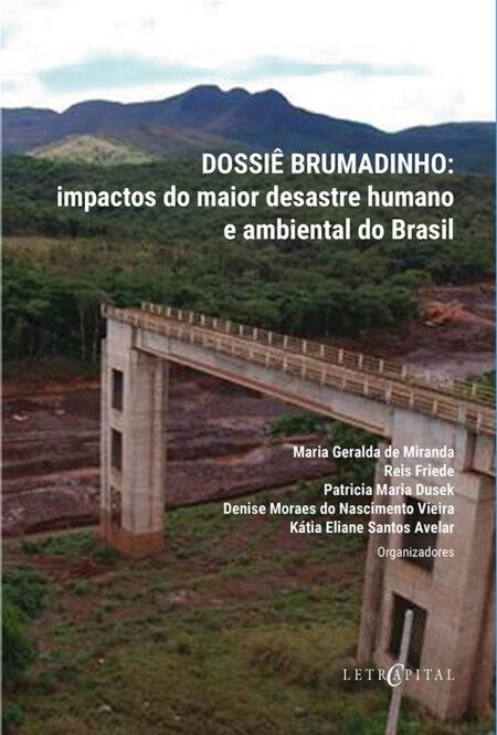 Dossiê Brumadinho: impactos do maior desastre humano e ambiental do Brasil